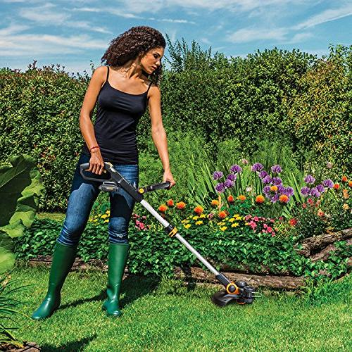 Worx GT 20V Grass with 2 and Included